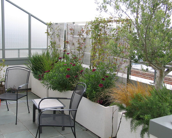 Privacy Screens: stainless steel screens for Penthouse garden